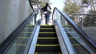 押上駅からスカイツリー正面エントランスへ歩く thumbnail