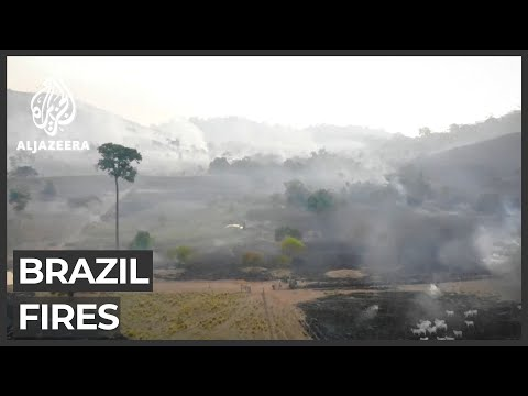 Brazil: World's largest wetland faces record wildfires
