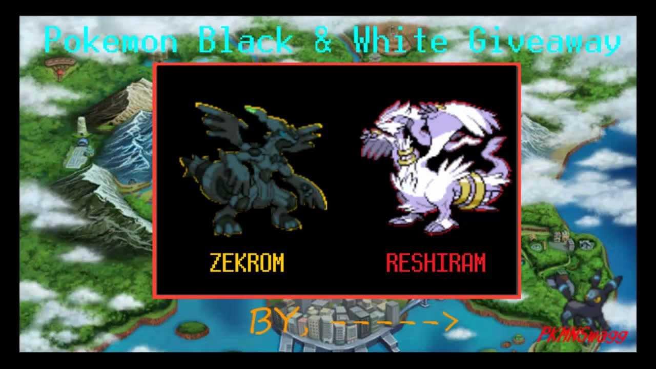 Reshiram And Zekrom Picture