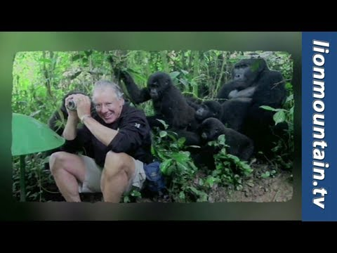 Touched by a Gorilla | Caught in the Act