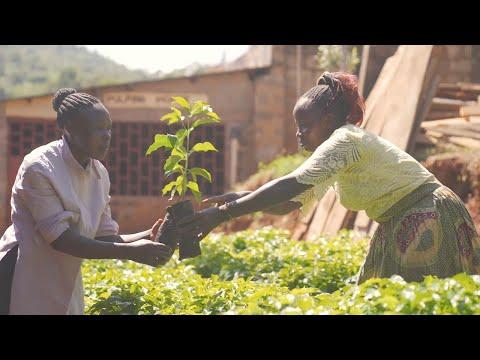 Climate Crisis: Farming