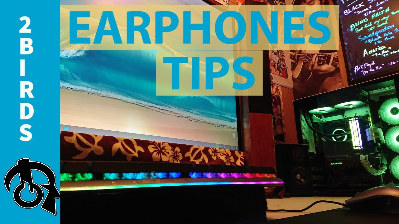 Earphone tips (XELASTEC) &  Hey Basshead