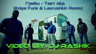 Грибы Тает ле д Kolya Funk Lavrushkin Radio Remix Video By DJ Rashik