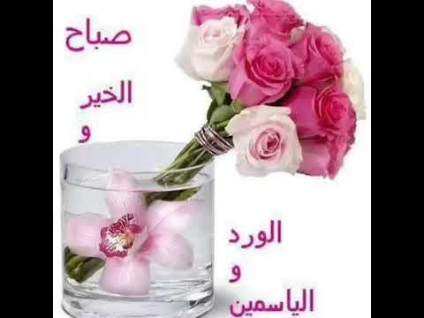 Saba7o good morning arabic youtube saba7o good morning arabic m4hsunfo