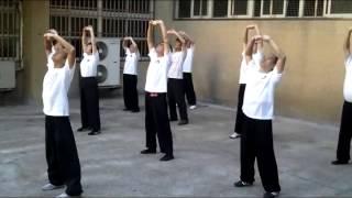18 Mins Qi Gong Ba Duan Jin Health Exercise Workout Group - Qi Gong Chi School