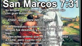 Cristo Jesus 29 BIBLIA de Dios EVANGELIO San Marcos Parabola HD Book Dios en Biblia TV Jesus Cristo