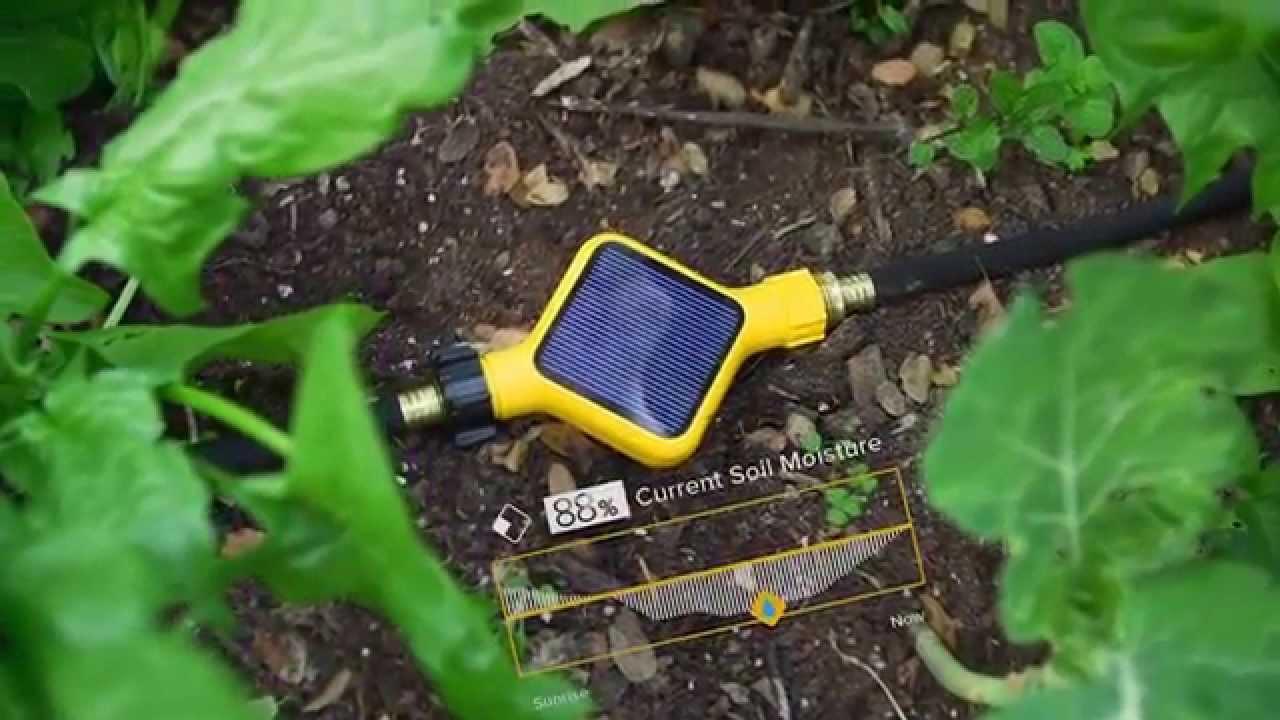 edyn introduction edyn garden - Edyn Garden Sensor