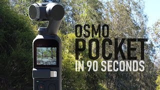 Osmo Pocket In 90 Seconds - Everything You Need To Know | DansTube.TV