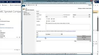 CRM 2013 Two Option Data Type