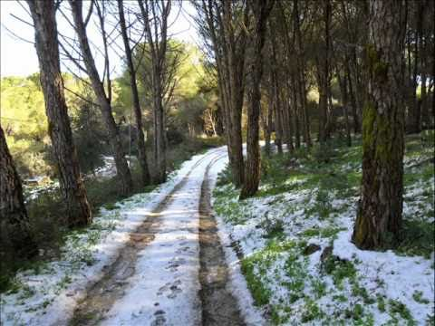Monte Bonifato- Alcamo 2010