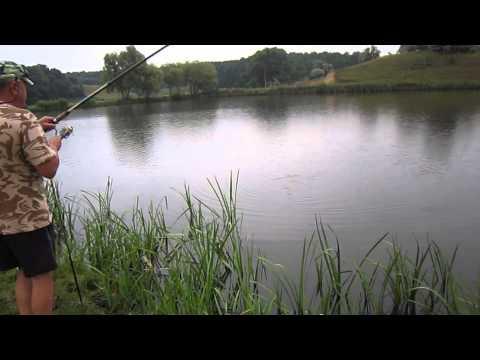 рыбалка в васильковском районе киевской области