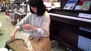 島村楽器モレラ岐阜店音楽教室 箏・三味線科 川瀬 由里先生です。 和楽...