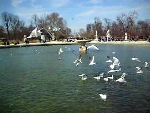 les Tuileries : Ersilia e il suo animalismo nascosto