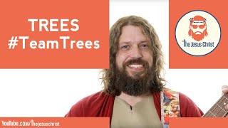 Trees #TeamTrees