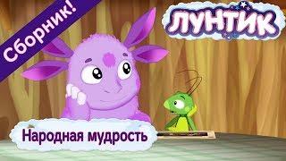 Народная мудрость ☝️ Лунтик ☝️ Сборник мультфильмов 2018