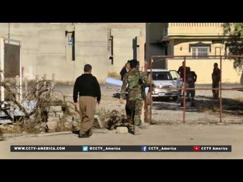 Iraq's olive region looks to rebuild after severe damage by ISIL