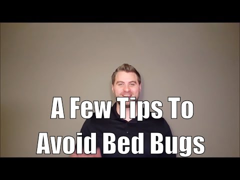 A Few Tips To Avoid Bed Bugs While Traveling This Holiday Season