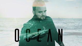 a história por trás de ocean alok zeeba iro