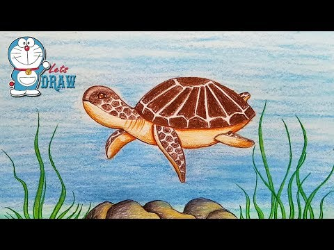 how-to-draw-scenery-of-turtle-under-water-step-by-step