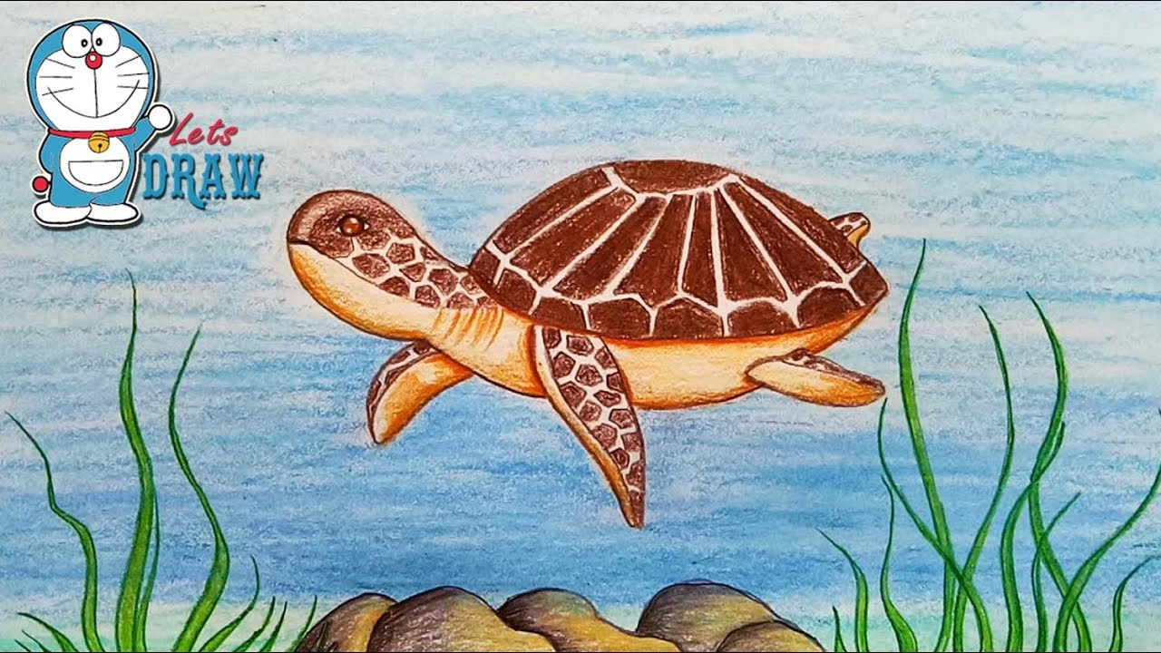 How to draw scenery of turtle under water step by step ...