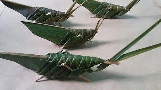 cara buat belalang dari daun kelapa