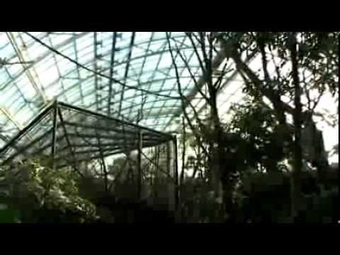 inauguration en avant premi re de la grande serre du nouveau zoo de vincennes paris youtube. Black Bedroom Furniture Sets. Home Design Ideas