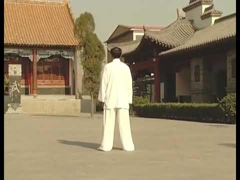 西安style_王西安 Wang Xian - 陳式太極拳老架一路(後) Chen Style Taiji - Old ...