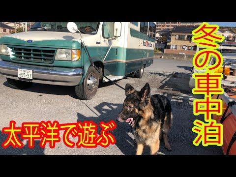 冬の太平洋で犬連れ車中泊ford e-350シャパード、マック君大活躍