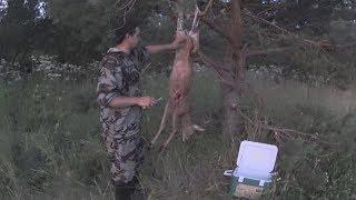 Как разделать косулю в лесу