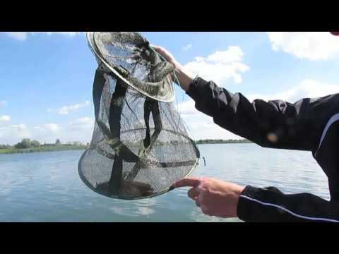 Рыбалка .Поиск Канадского сома. Где он обитает и на на что клюет.