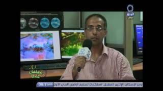 بالفيديو.. الأرصاد: ارتفاع تدريجي لدرجات الحرارة الساعات المقبلة