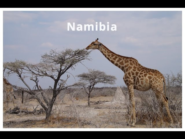 14 Tage Camping in Nambia