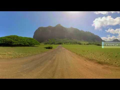 360°ハワイ-オアフ島-by-ハワイ州観光局-360-oahu-vr-by-hawaii-tourism-japan