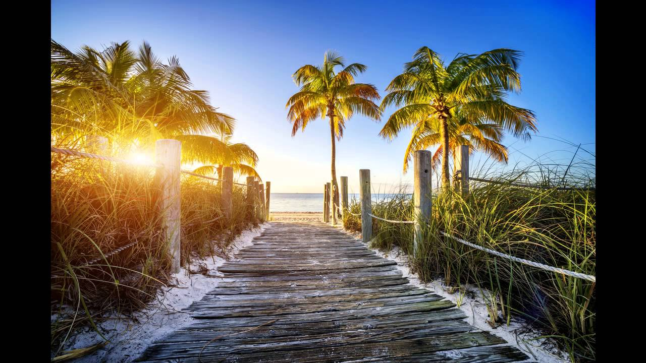 Miami Erfahrungen
