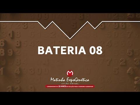 BATERIA 08 MATINHA EXPOGENÉTICA 2021