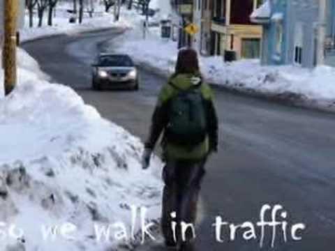 Sidewalks of St.John's