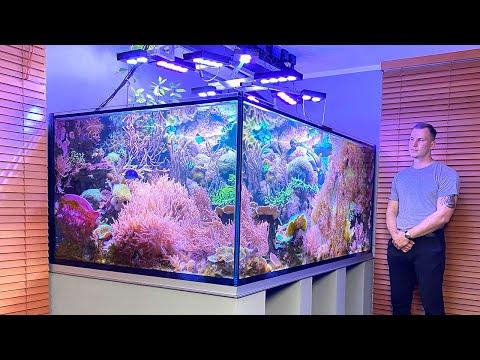 "GERMAN REEF TANKS - ""Nature Reef"" - 3000 liter / 790 gallon coral aquascape / saltwater aquarium"