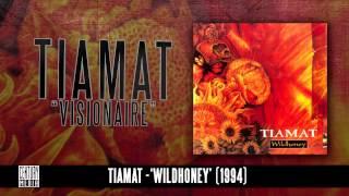 TIAMAT - Visionaire (Album Track)