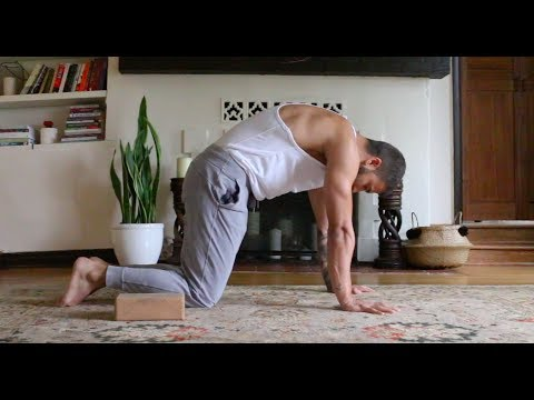 Yoga Asana For Beginners Day 1 Shoulders and Wrists