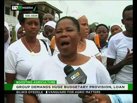 Osun Farmers demand huge budgetary provision, loan
