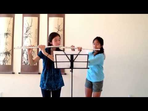 Themes from Narnia - Flute Duet