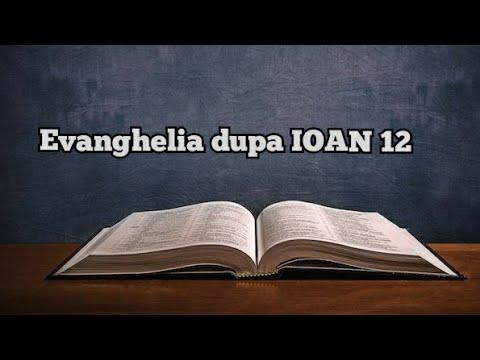 Biblia audio~ Evanghelia dupa Ioan   IOAN 12 from YouTube · Duration:  6 minutes 24 seconds