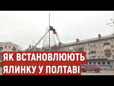 Суспільне Полтава: У Полтаві встановлюють новорічну ялинку