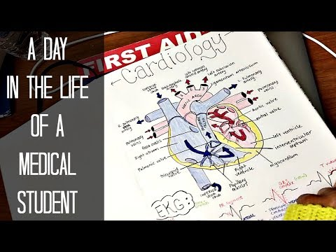 A Day in the Life of a First Year Medical Student | Med School Vlog #14