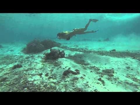 Underwater Pacific