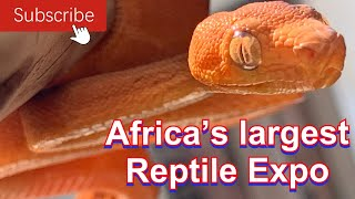 AFRICA'S OLDEST AND LARGEST REPTILE EXPO!!
