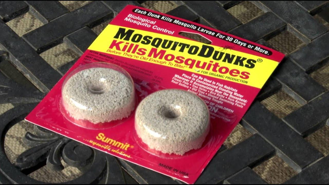 Eliminate Mosquito Breeding Sites
