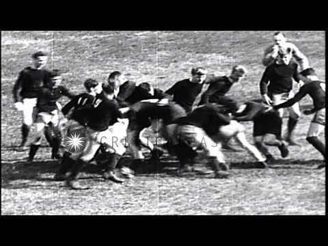 Harvard defeats Yale in a Rugby match by 14-3 in Cambridge, Massachusetts HD Stock Footage