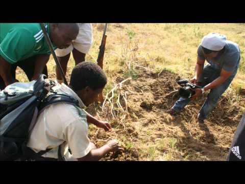 AmaZulu Hosted by Ezemvelo KZN Wildlife at Hluhluwe iMfolozi.wmv
