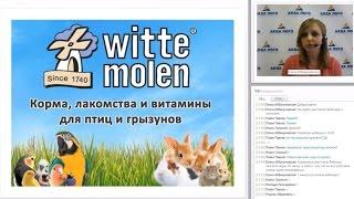 Корм для домашних животных от Witte Molen: птицы и грызуны